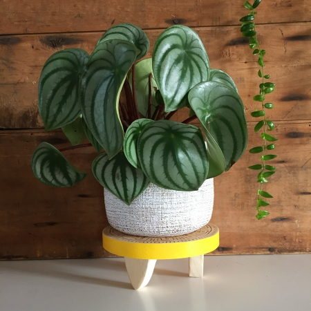 petit tabouret pour plante jaune